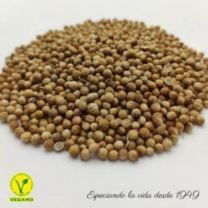 cilantro en grano
